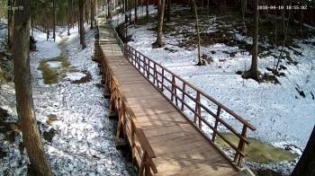 Абрамцево, Пешеходная зона, Мост в лесу